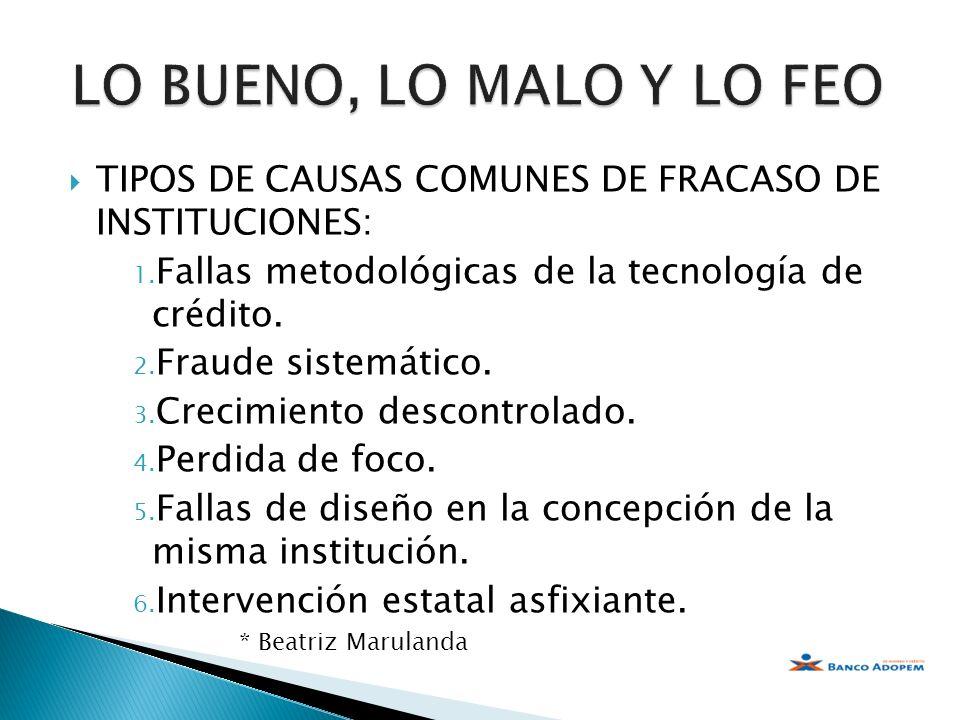 LO BUENO, LO MALO Y LO FEO TIPOS DE CAUSAS COMUNES DE FRACASO DE INSTITUCIONES: Fallas metodológicas de la tecnología de crédito.