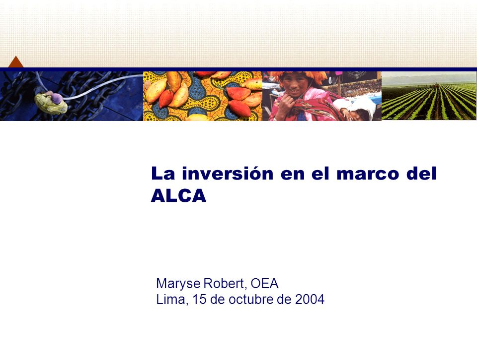 La inversión en el marco del ALCA