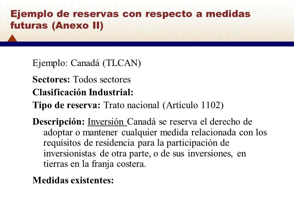 Ejemplo de reservas con respecto a medidas futuras (Anexo II)