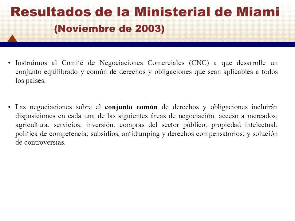 Resultados de la Ministerial de Miami (Noviembre de 2003)