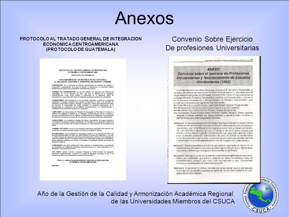 (PROTOCOLO DE GUATEMALA)