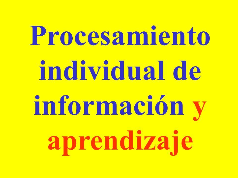 Procesamiento individual de información y aprendizaje