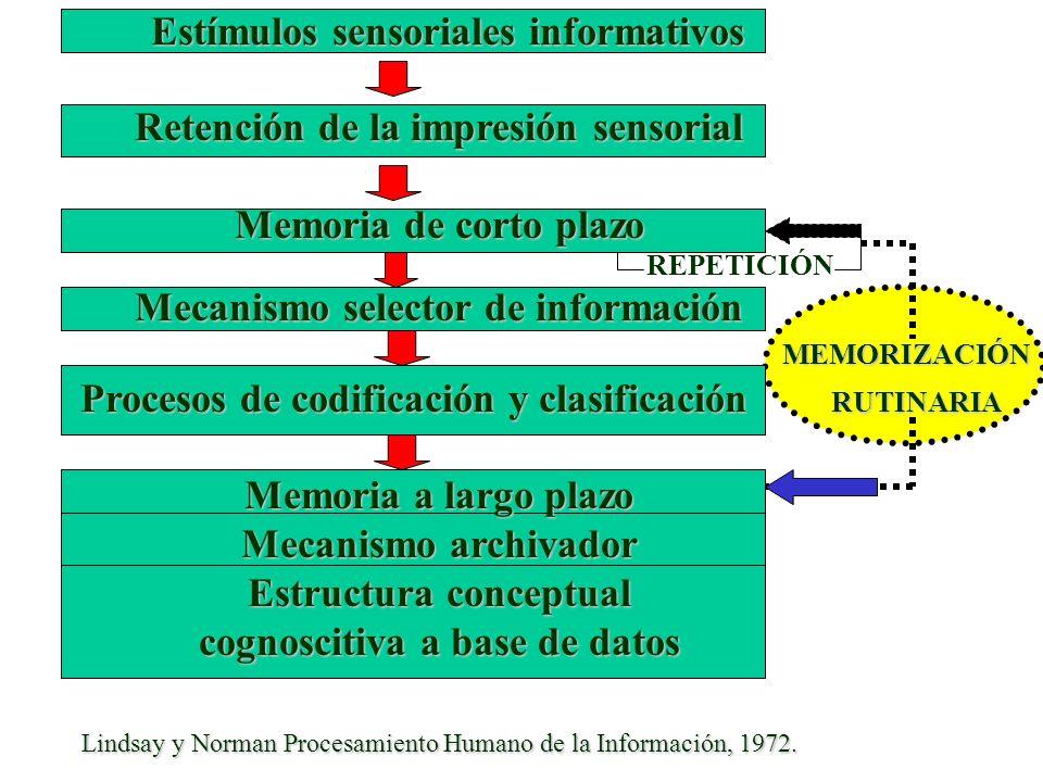 Estructura conceptual