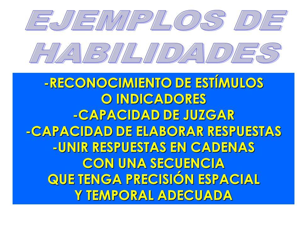EJEMPLOS DE HABILIDADES