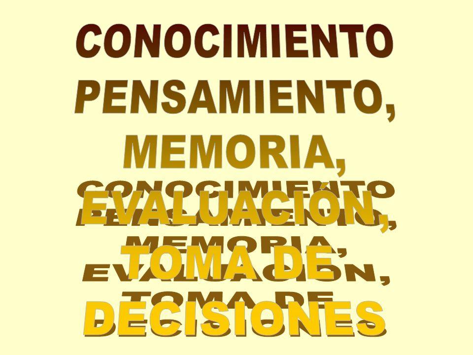 CONOCIMIENTO PENSAMIENTO, MEMORIA, EVALUACIÓN, TOMA DE DECISIONES