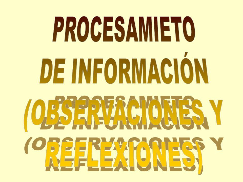 PROCESAMIETO DE INFORMACIÓN (OBSERVACIONES Y REFLEXIONES)