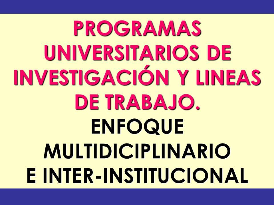 INVESTIGACIÓN Y LINEAS E INTER-INSTITUCIONAL