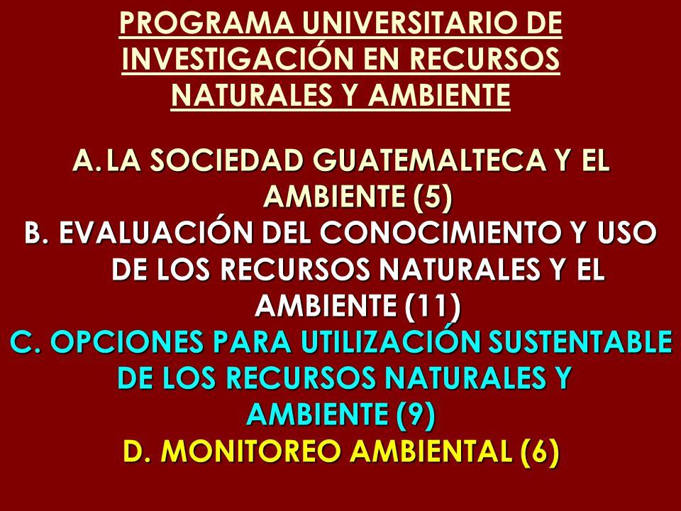 PROGRAMA UNIVERSITARIO DE INVESTIGACIÓN EN RECURSOS