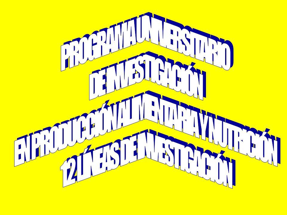 PROGRAMA UNIVERSITARIO DE INVESTIGACIÓN