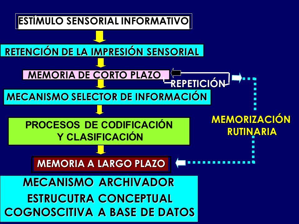 ESTRUCUTRA CONCEPTUAL COGNOSCITIVA A BASE DE DATOS