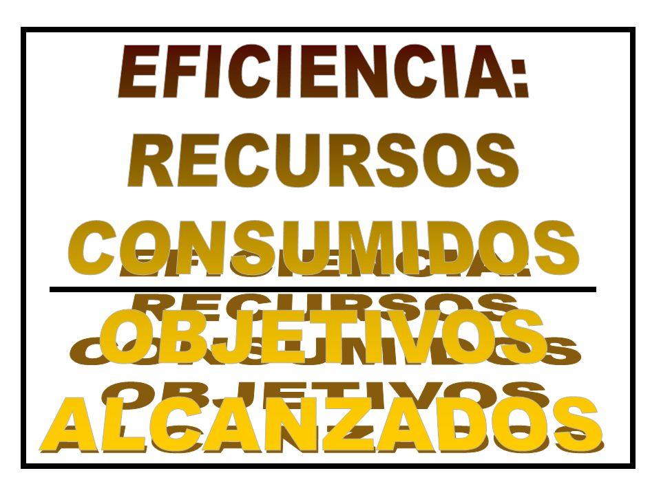 EFICIENCIA: RECURSOS CONSUMIDOS OBJETIVOS ALCANZADOS