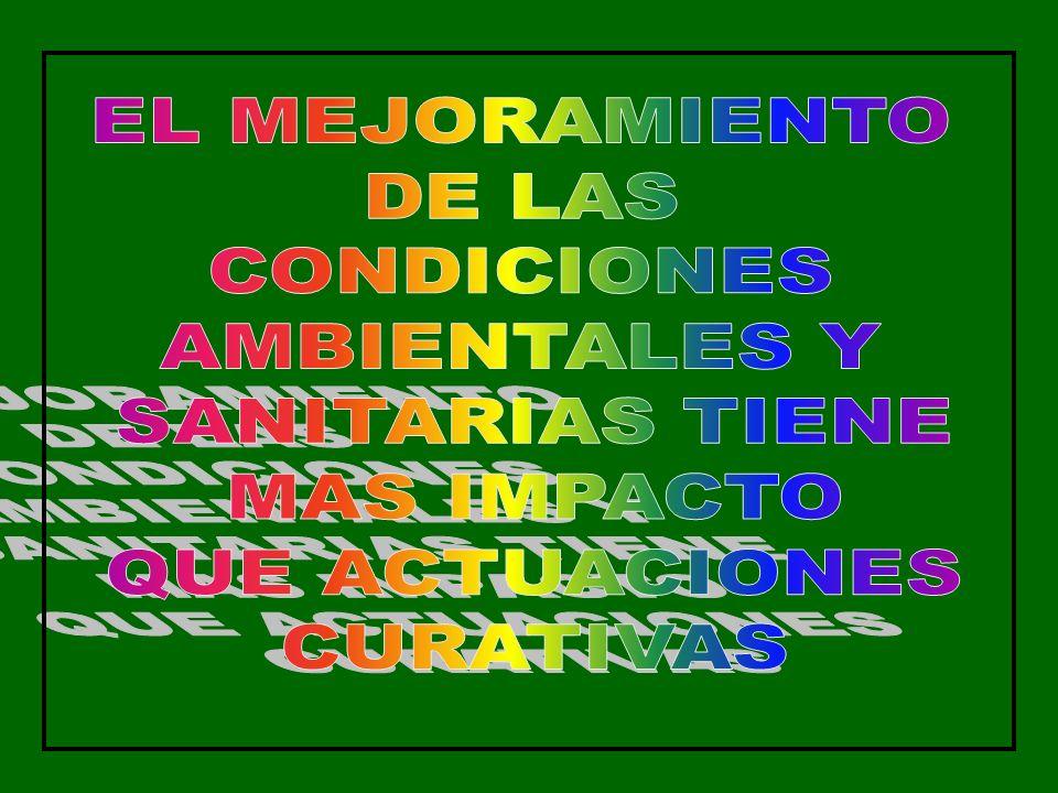 EL MEJORAMIENTO DE LAS. CONDICIONES. AMBIENTALES Y. SANITARIAS TIENE. MAS IMPACTO. QUE ACTUACIONES.