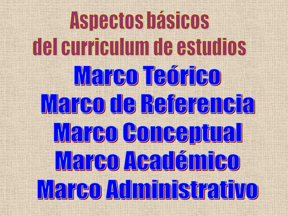 del curriculum de estudios