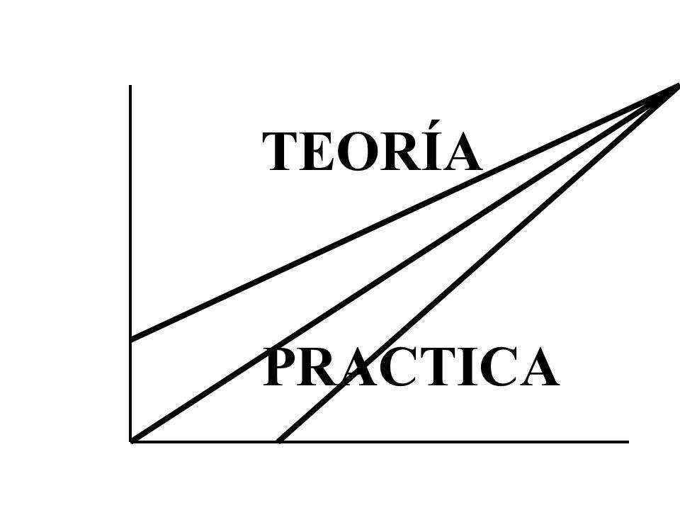 TEORÍA PRACTICA