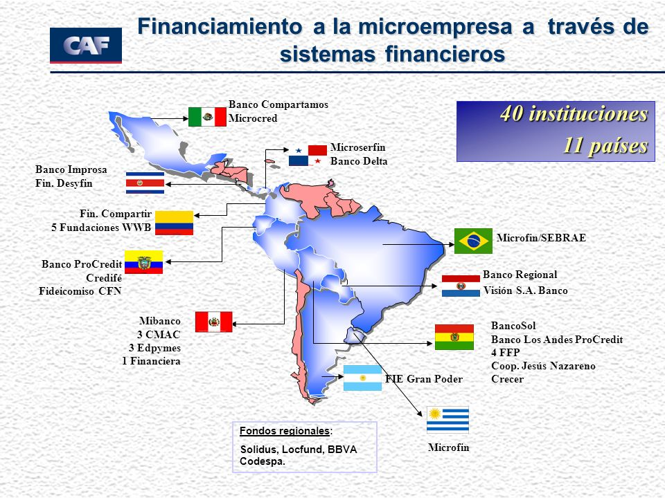 Financiamiento a la microempresa a través de sistemas financieros