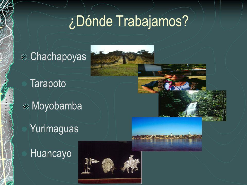 ¿Dónde Trabajamos Chachapoyas Tarapoto Moyobamba Yurimaguas Huancayo