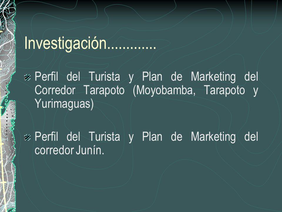 Investigación.............Perfil del Turista y Plan de Marketing del Corredor Tarapoto (Moyobamba, Tarapoto y Yurimaguas)