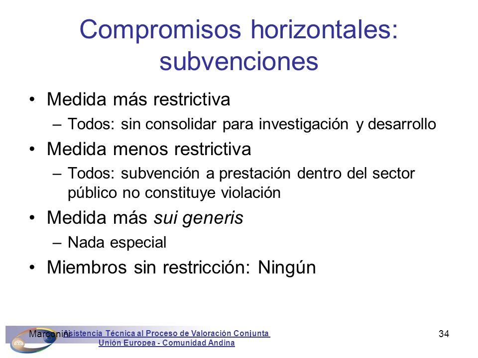 Compromisos horizontales: subvenciones
