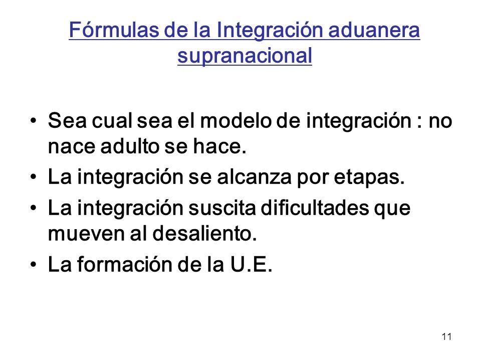 Fórmulas de la Integración aduanera supranacional