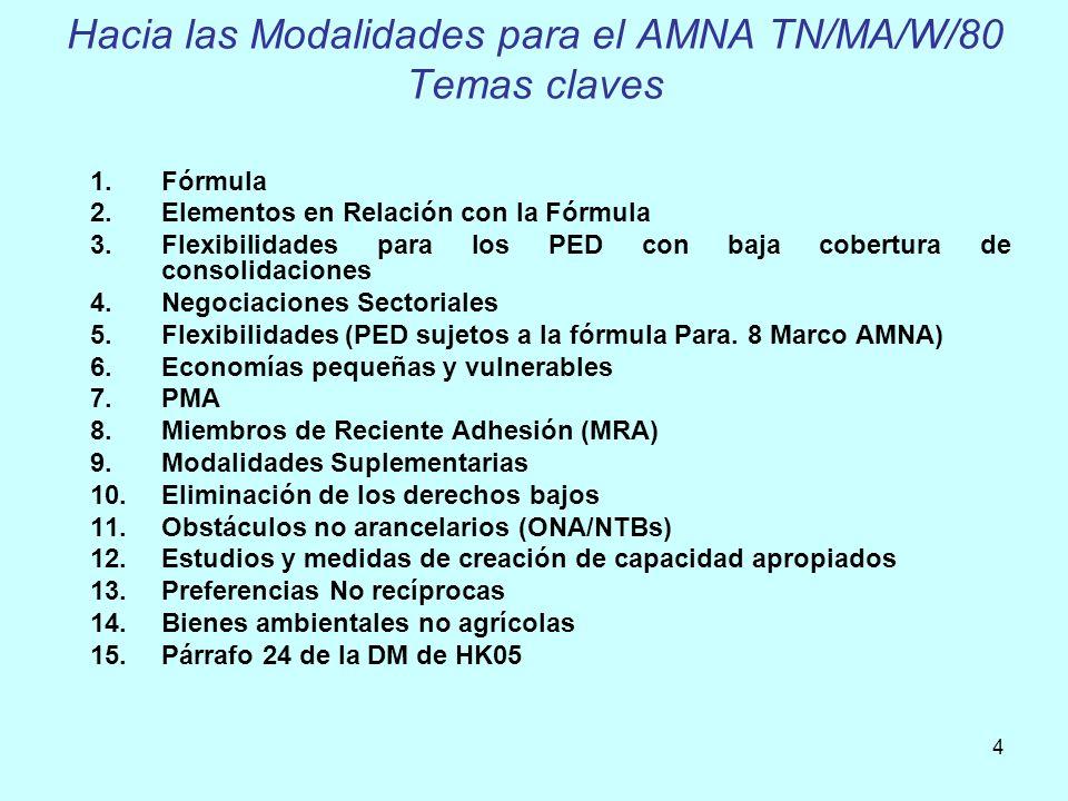Hacia las Modalidades para el AMNA TN/MA/W/80 Temas claves