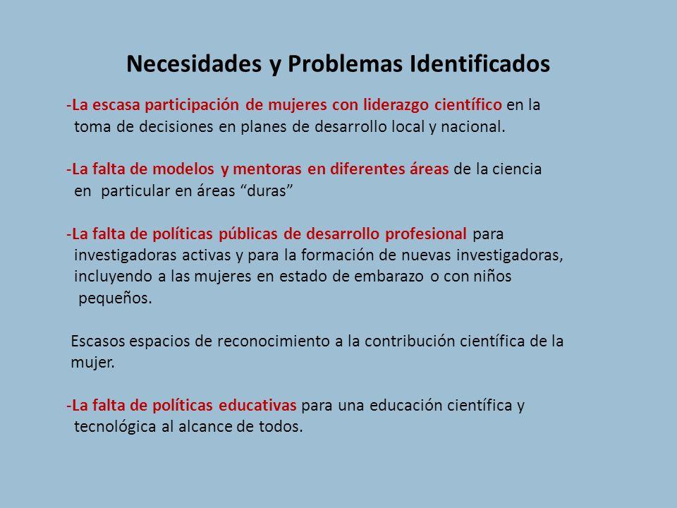 Necesidades y Problemas Identificados
