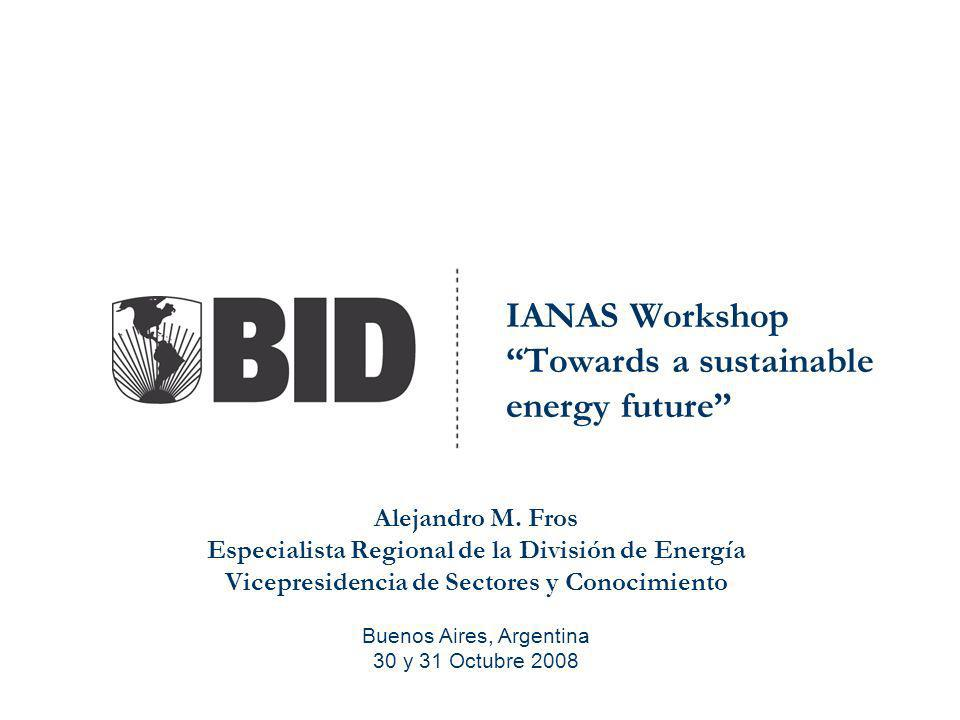IANAS Workshop Towards a sustainable energy future