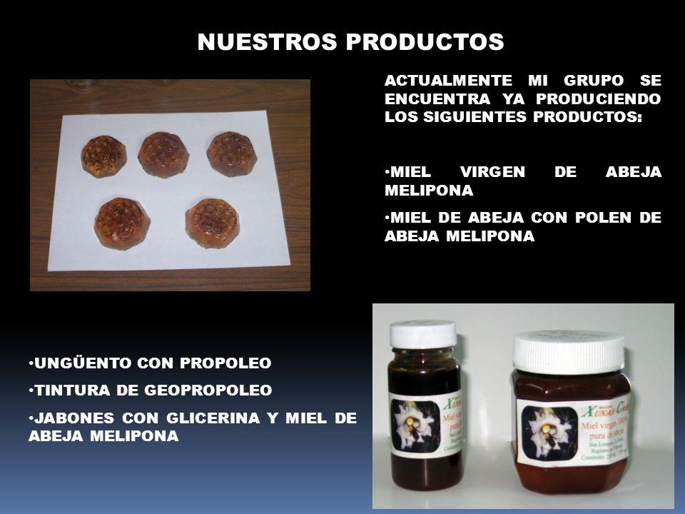 NUESTROS PRODUCTOSActualmente mi grupo se encuentra ya produciendo los siguientes productos: Miel virgen de abeja melipona.
