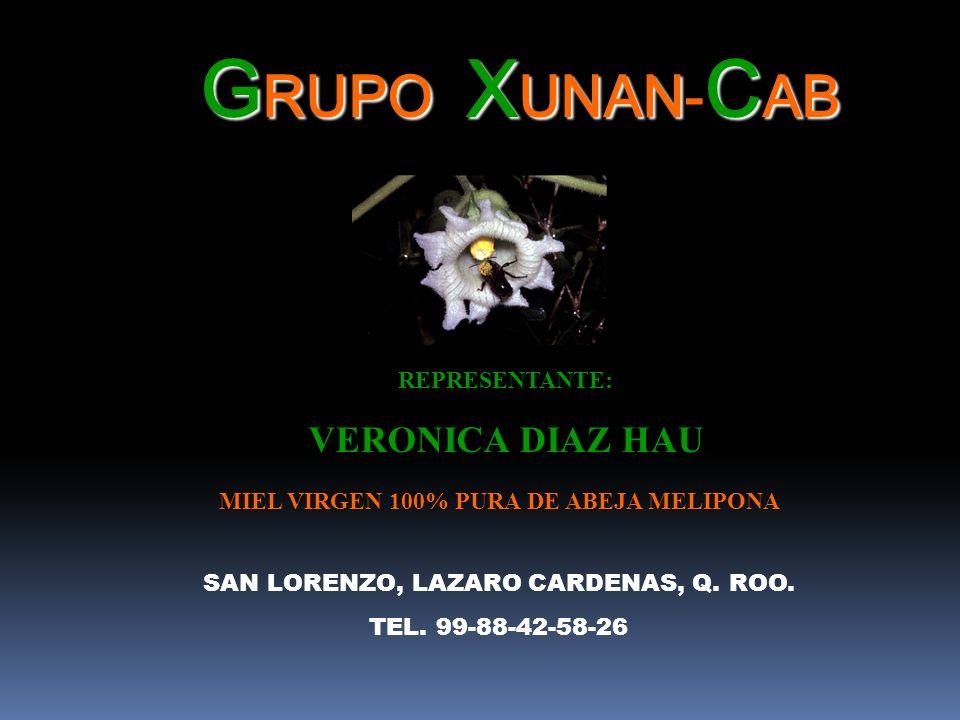 GRUPO: XUNAN-CAB VERONICA DIAZ HAU REPRESENTANTE: