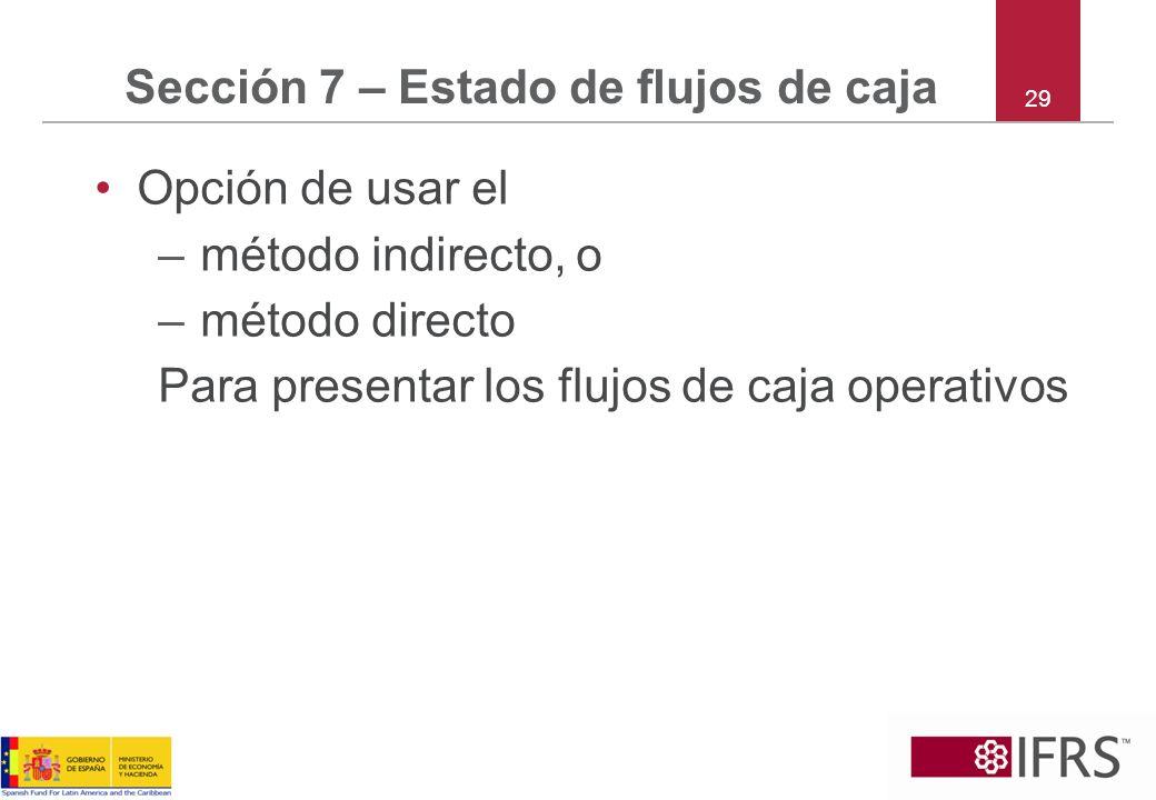 Sección 7 – Estado de flujos de caja