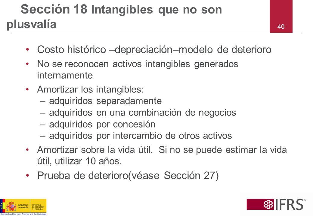 Sección 18 Intangibles que no son plusvalía