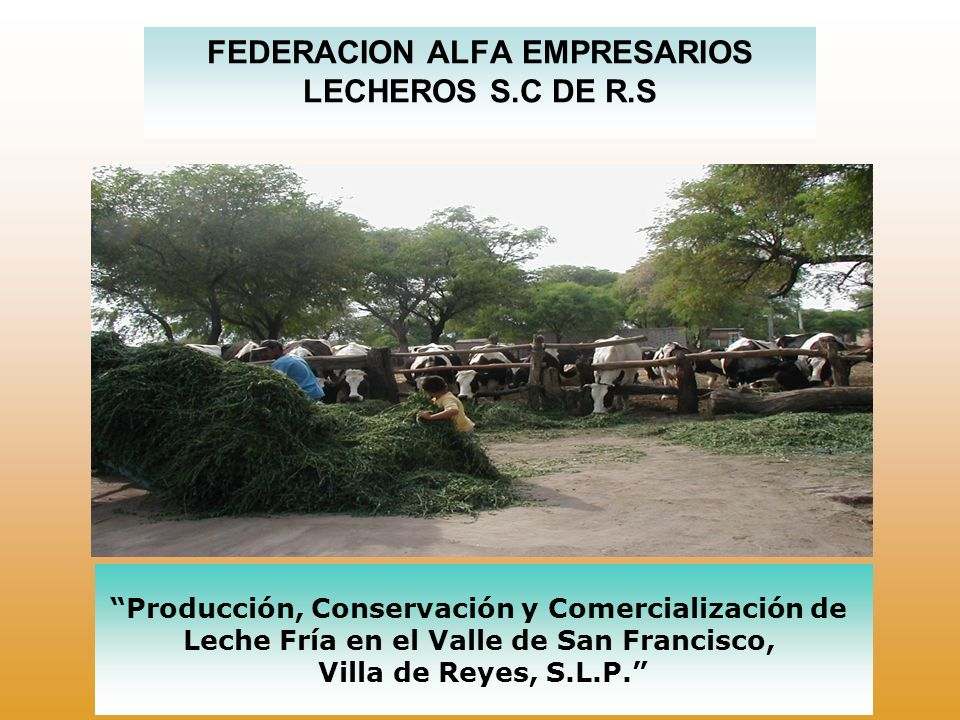 FEDERACION ALFA EMPRESARIOS LECHEROS S.C DE R.S