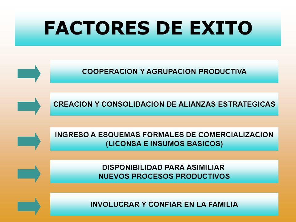 FACTORES DE EXITO COOPERACION Y AGRUPACION PRODUCTIVA