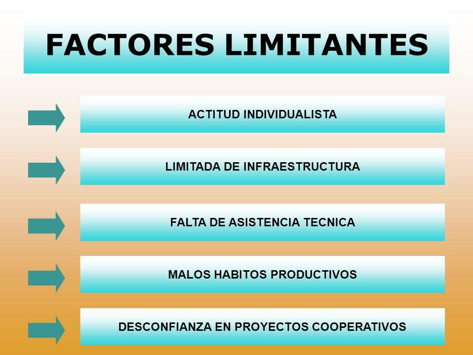FACTORES LIMITANTES ACTITUD INDIVIDUALISTA LIMITADA DE INFRAESTRUCTURA