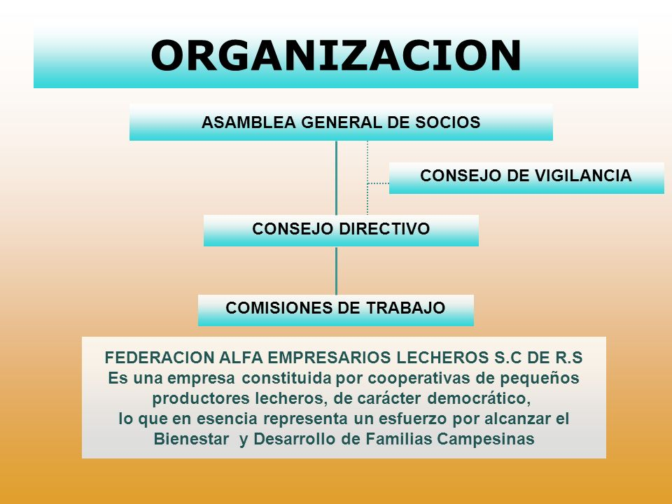 ORGANIZACION ASAMBLEA GENERAL DE SOCIOS CONSEJO DE VIGILANCIA