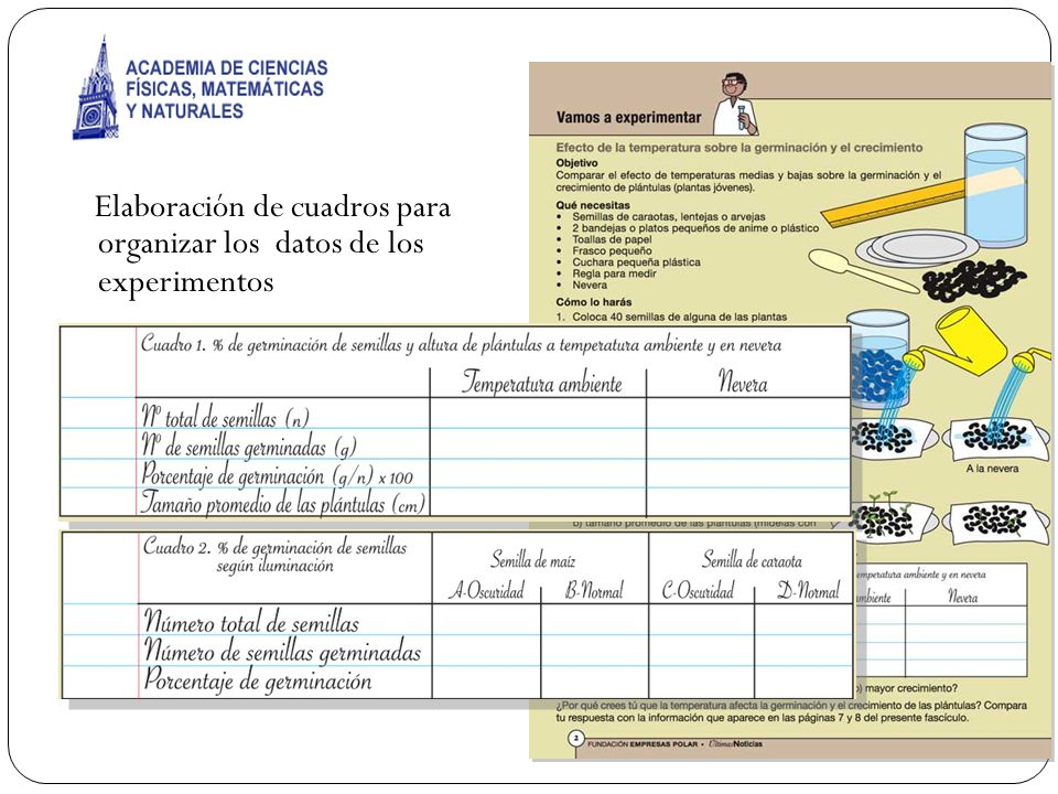 Elaboración de cuadros para organizar los datos de los experimentos