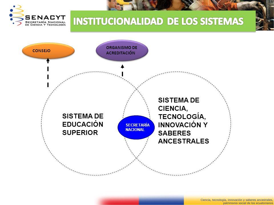 INSTITUCIONALIDAD DE LOS SISTEMAS