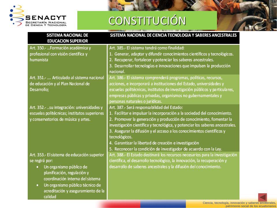 CONSTITUCIÓN 5