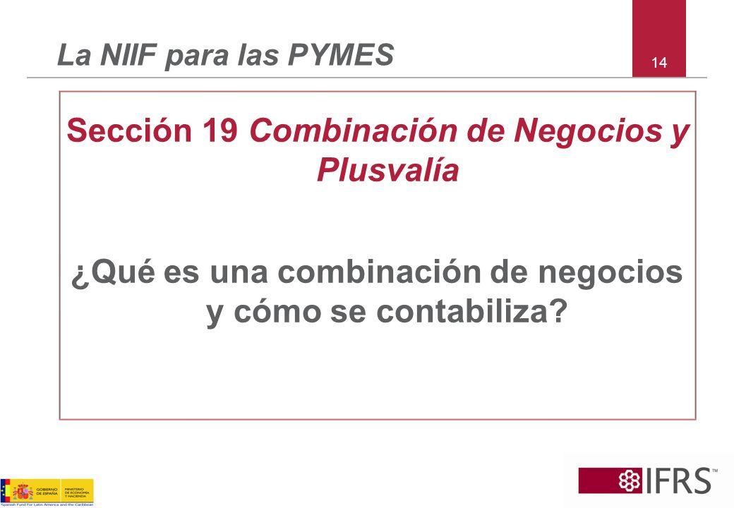 Sección 19 Combinación de Negocios y Plusvalía