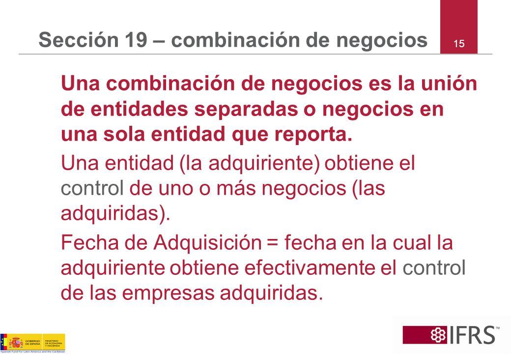 Sección 19 – combinación de negocios