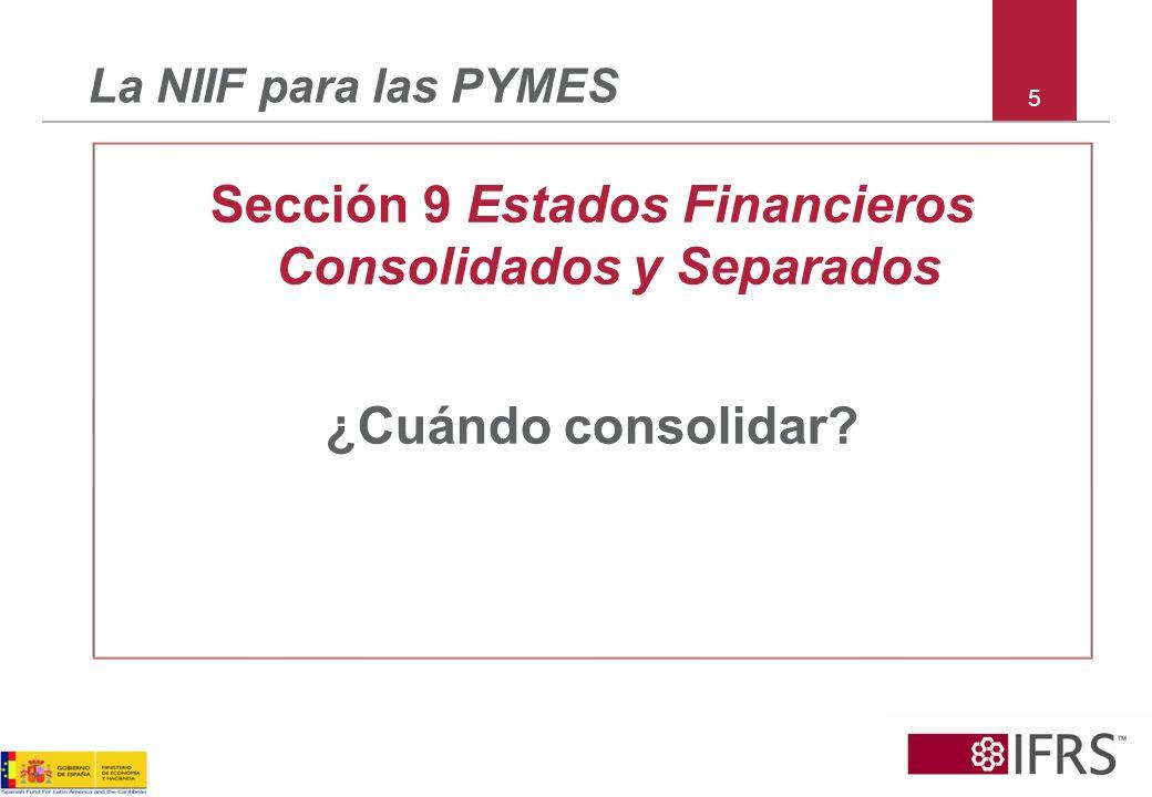 Sección 9 Estados Financieros Consolidados y Separados