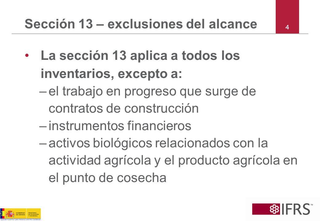 Sección 13 – exclusiones del alcance