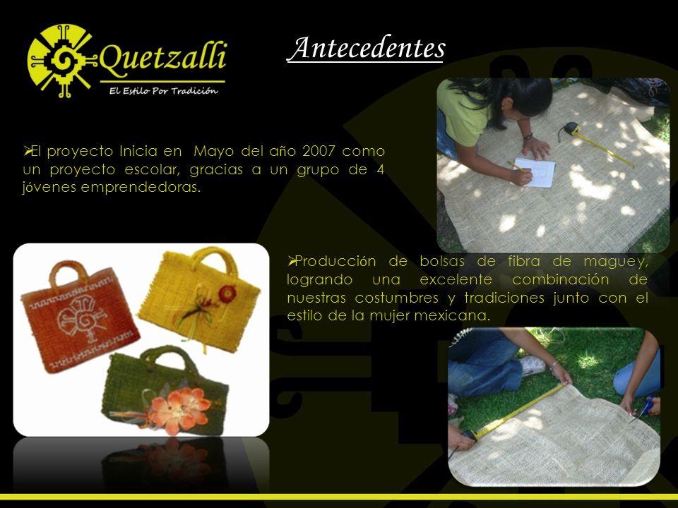 AntecedentesEl proyecto Inicia en Mayo del año 2007 como un proyecto escolar, gracias a un grupo de 4 jóvenes emprendedoras.
