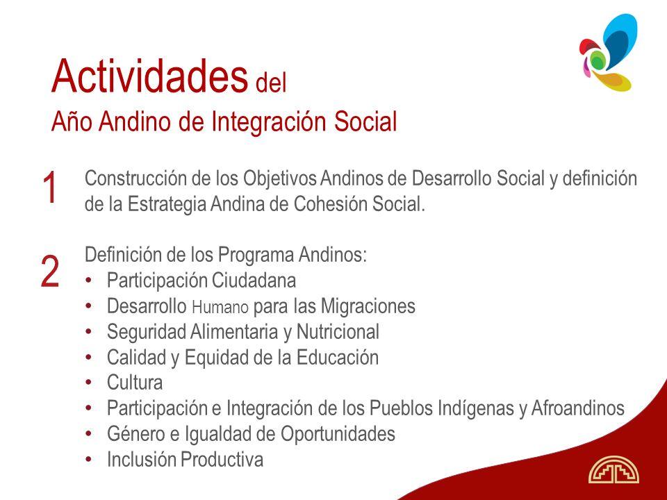 Actividades del 1 2 Año Andino de Integración Social