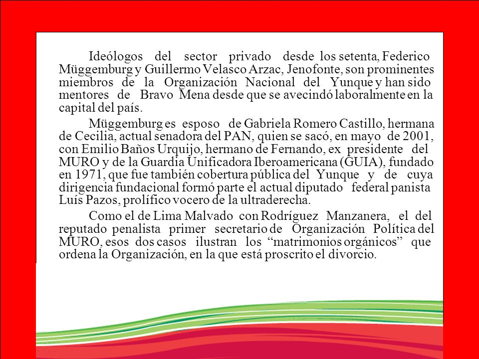 Ideólogos del sector privado desde los setenta, Federico Müggemburg y Guillermo Velasco Arzac, Jenofonte, son prominentes miembros de la Organización Nacional del Yunque y han sido mentores de Bravo Mena desde que se avecindó laboralmente en la capital del país.
