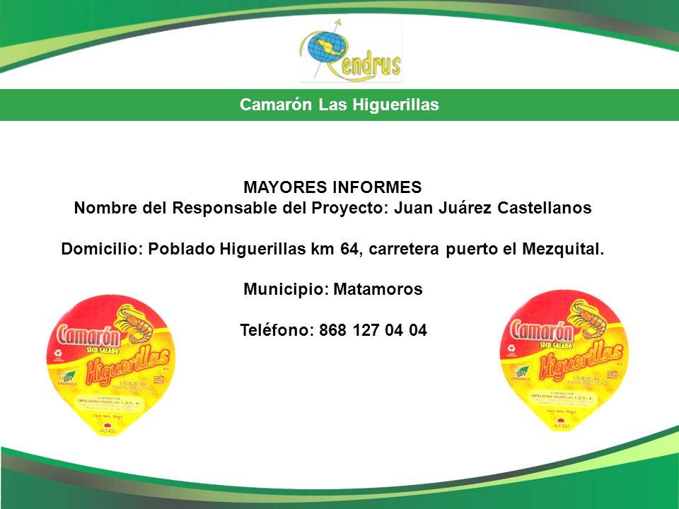 Nombre del Responsable del Proyecto: Juan Juárez Castellanos