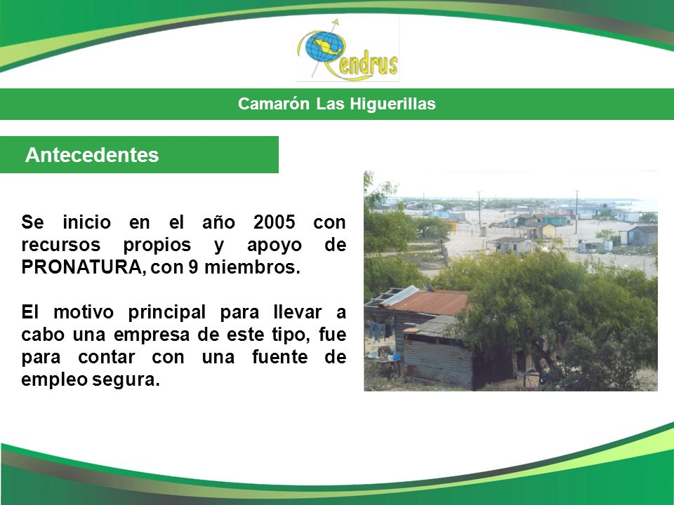 Antecedentes Se inicio en el año 2005 con recursos propios y apoyo de PRONATURA, con 9 miembros.