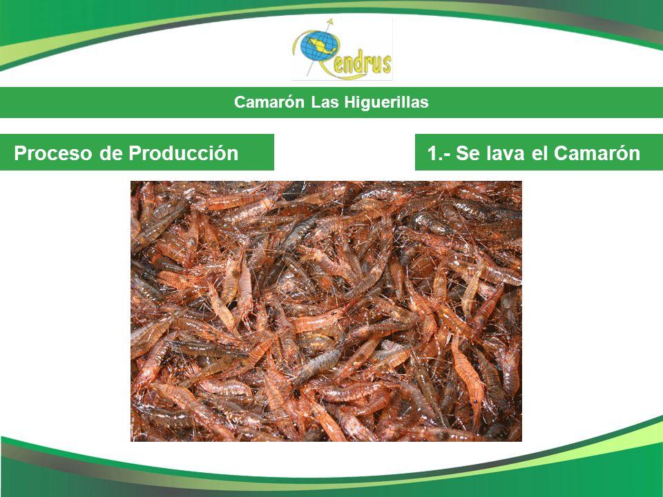 Proceso de Producción 1.- Se lava el Camarón