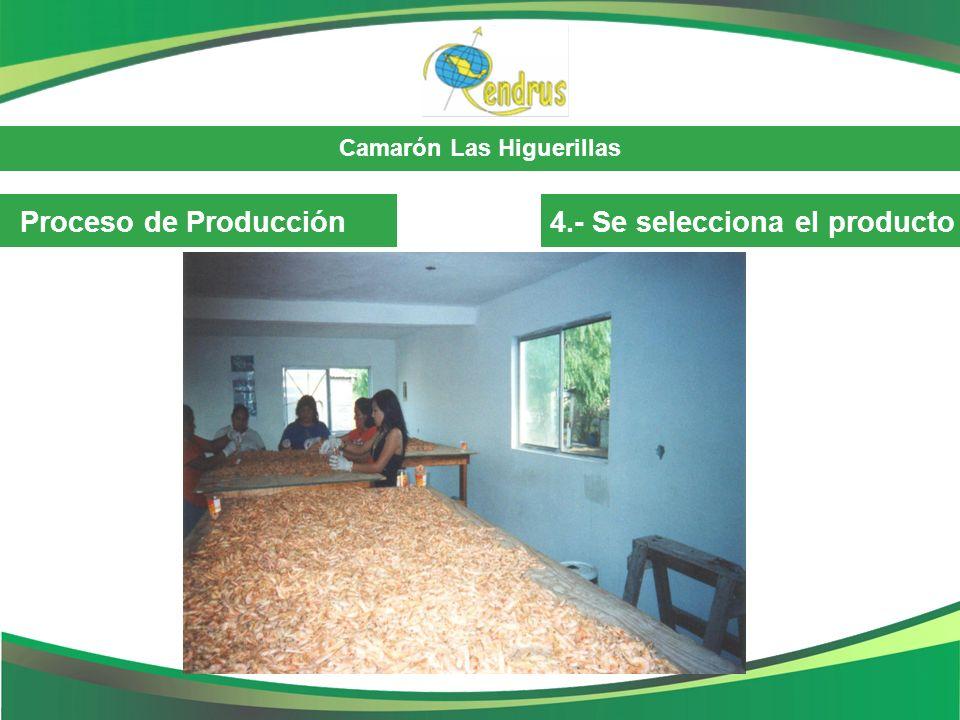 Proceso de Producción 4.- Se selecciona el producto