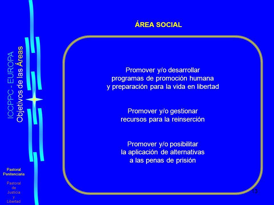 ICCPPC - EUROPA ÁREA SOCIAL Promover y/o desarrollar