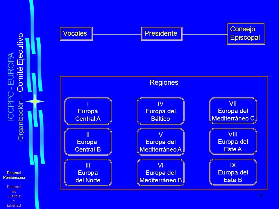 Organización – Comité Ejecutivo